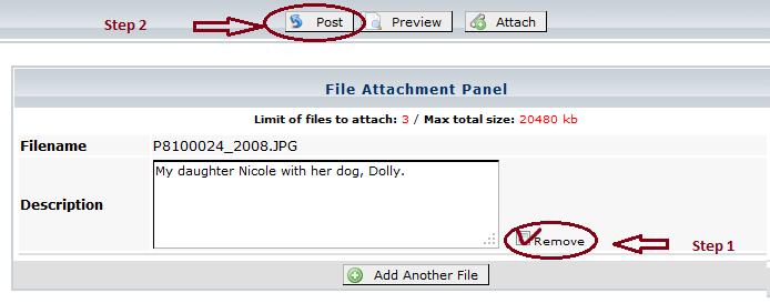 Remove attachments in posts